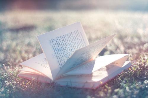 书.jpg