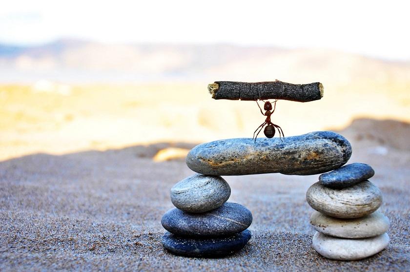 为什么大部分人的职场,总是越努力越绝望?