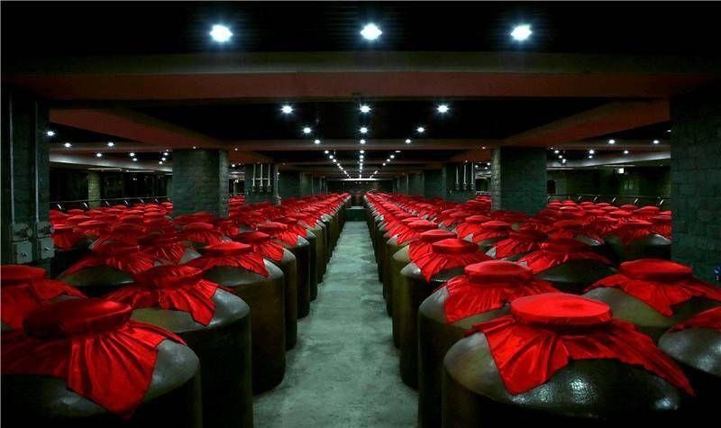 洋河蓝色经典,为什么会成为春节白酒市场的爆款?
